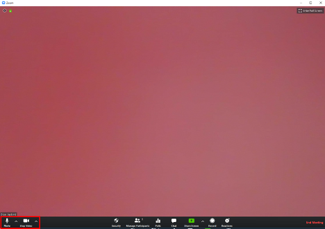 screenshot Zoom call desktop